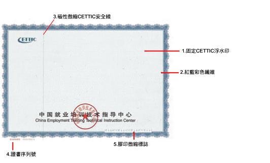 cettic 培训证书样本